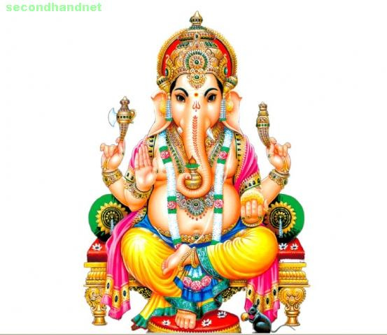 Vedic astrology  Service +919780095453
