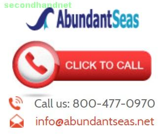 Abundant Seas Business Services Will Increase Your ROI By Reducing The Money and