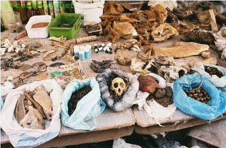 AFRICAN TRADITIONAL HEALER  +27738653119
