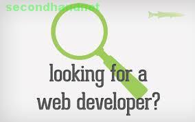 Professional website development & E-commerce website design