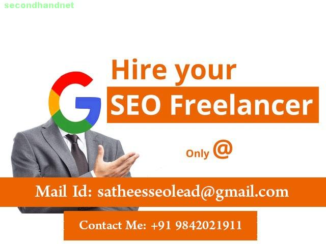 Hire SEO Freelancer in Delhi - Call Today & Start SEO for Your Website