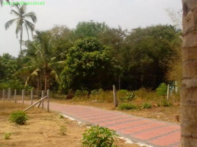 Residential Plots at Kottayi (09947851282)