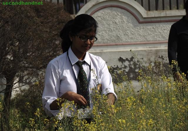 TOP B.SC AGRICULTURE  COLLEGE IN Roorkee