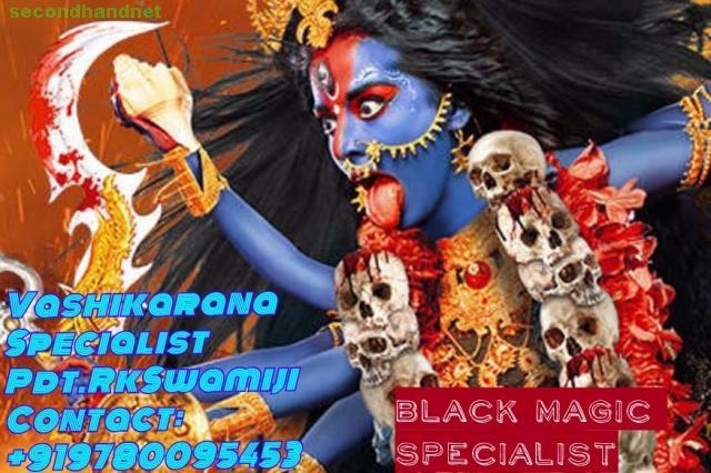 World famous astrologer +91-9780095453